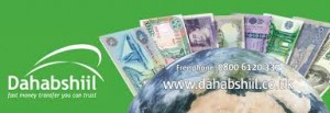Dahabshil: A Global Money Transfer Leader and Financial Powerhouse